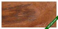 kayu jati ada doreng